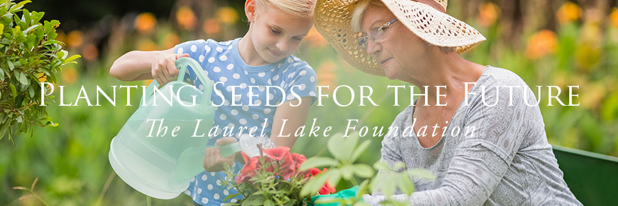 Laurel Lake Foundation Banner