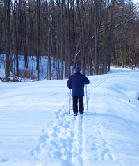 Cross Country Skiing at Laurel Lake