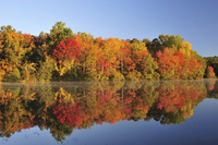 Fall foliage at Rider Lake